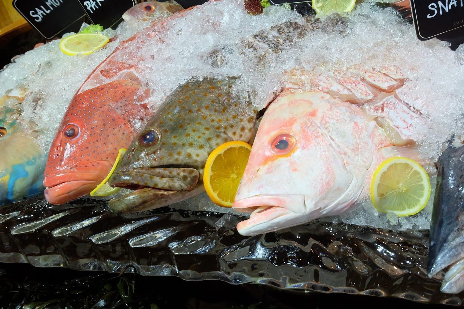 свежую рыбу лучше хранить во льду