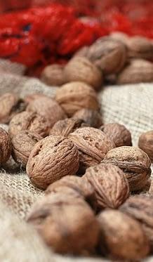 грецкие орехи надо правильно выбирать