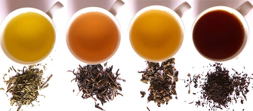 чай имеет много видов