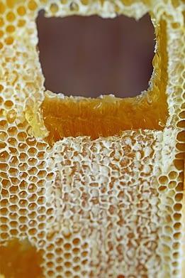 мед в сотах не любит перепад темпиратур