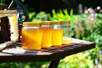 хранить мед не сложно надо соблать лишь некоторые правила