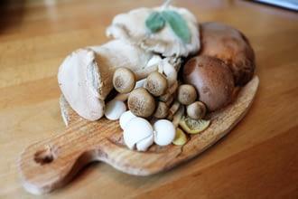 свежие грибы хранить дома