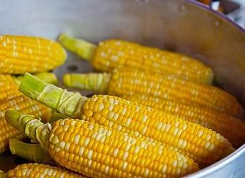 на зиму кукурузу можно убирать в морозилку