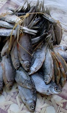 вяленую(сушеную)рыбу можно хранить разными способами